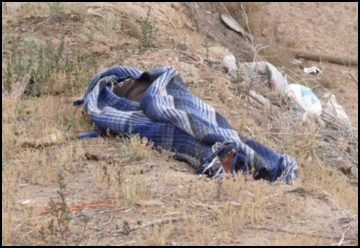Localizan cuerpo de decapitado en Lerdo de Tejada - plumas libres