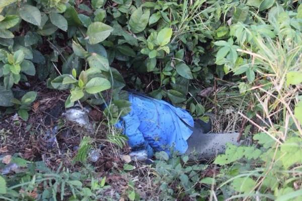 Habían desaparecido a inicios de este mes y aparecen asesinados/ Foto Plumas Libres