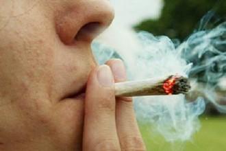 El consumo de marihuana deteriora la capacidad de memoria