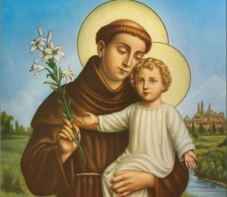 Hoy ce celebra al Santo de las Solteras, San Antonio de Padua - plumas libres