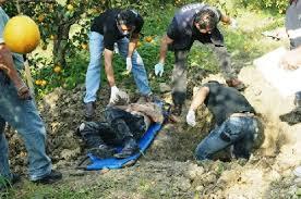 En la región de Cardel, Úrsulo Galvan, La Gloria, continúan apareciendo cuerpos de ejecutados