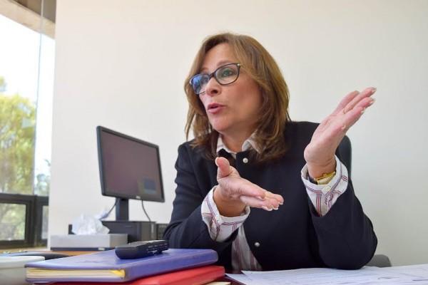 Resultado de imagen para Rocío Nahle García, coordinadora de Morena en la Cámara de Diputados.