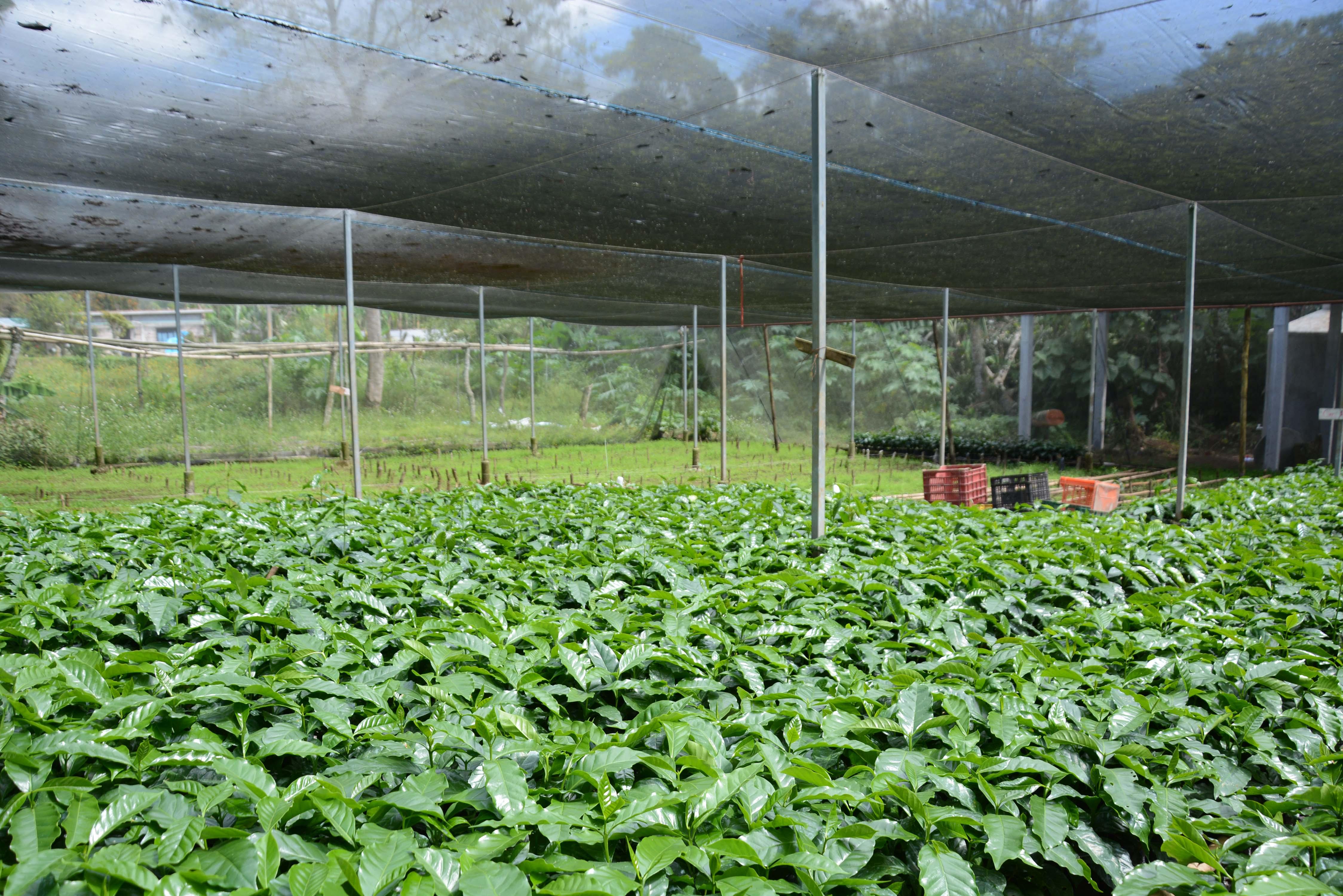 Instala ayuntamiento sistemas de riego en viveros for Viveros en cordoba