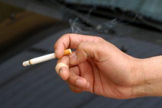 La investigación descubrió las mutaciones producidas anualmente en cada célula (de pulmón, laringe, faringe, boca, vejiga e hígado) al fumar un paquete al día.