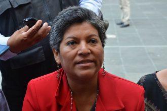 Diputada de Morena por el distrito de Cosoleacaque, María del Rocío Pérez Pérez/Fotover