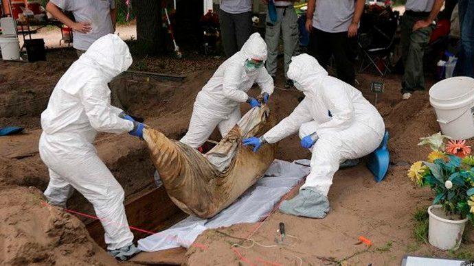 Fosarios más grandes que albercas, pero aún así, fiscalía dice que no hay elementos para investigara Arturo Bermudez por esos crímenes
