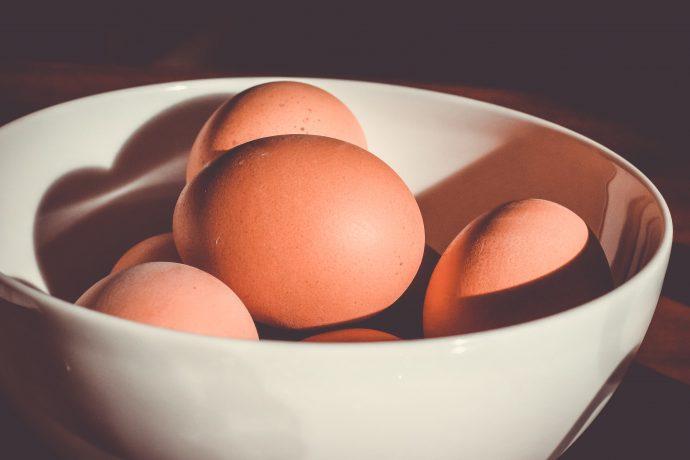 Desarrollan medicinas en huevos de gallina