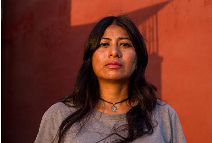 Localizan cinco cuerpos en una casa en Veracruz