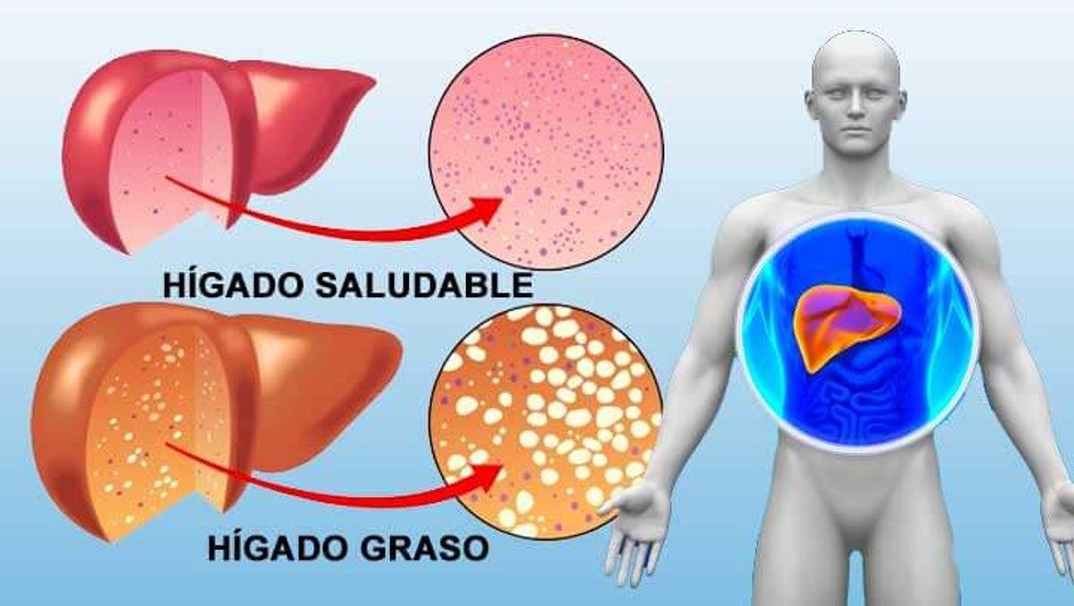 Maniquíes aproximadamente explique la funcion del atp en el metabolismo celular